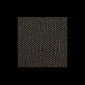 491-meteor